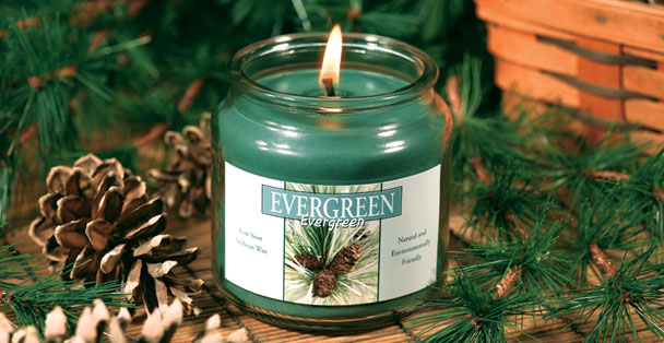 Capture the outdoors with the fresh scent of this Evergreen soy candle