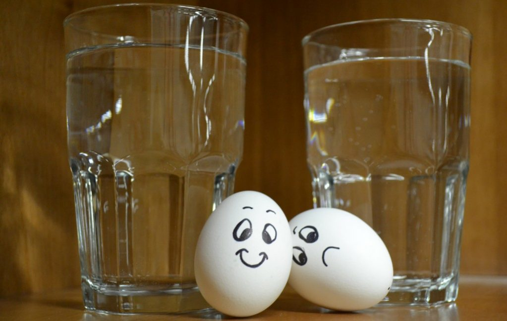 How to Tell if an Egg is Bad | Egg Test