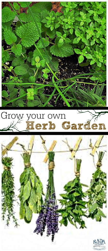 Herb Garden Collage