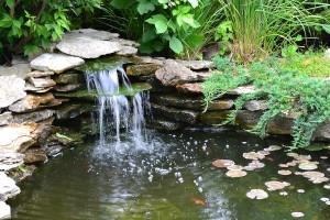 A beautiful stream.