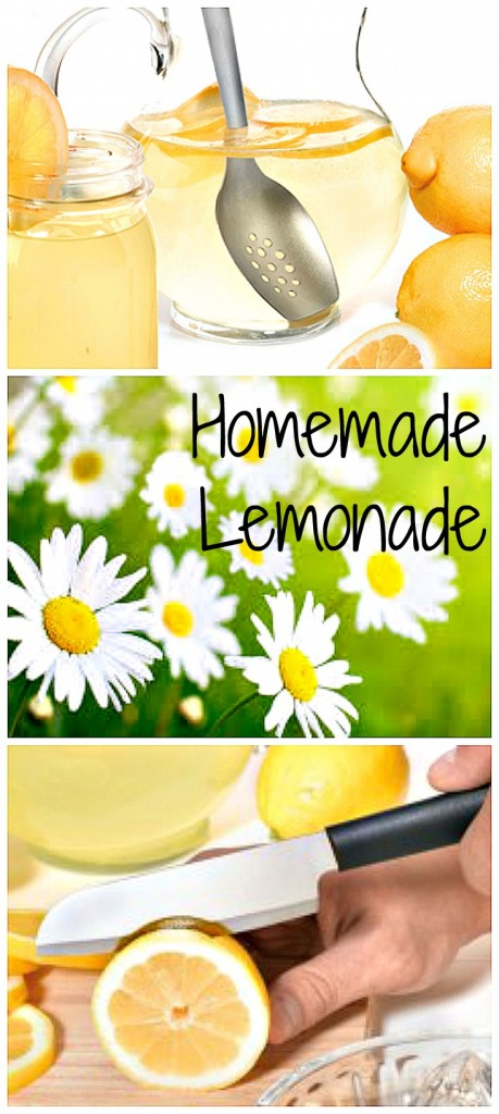 Fresh Lemonade Collage