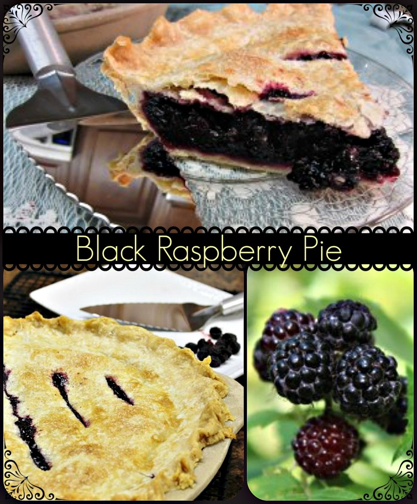 Black Raspberry Pie Collage