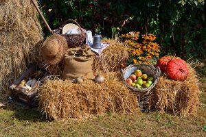 A harvest festival arrangement.