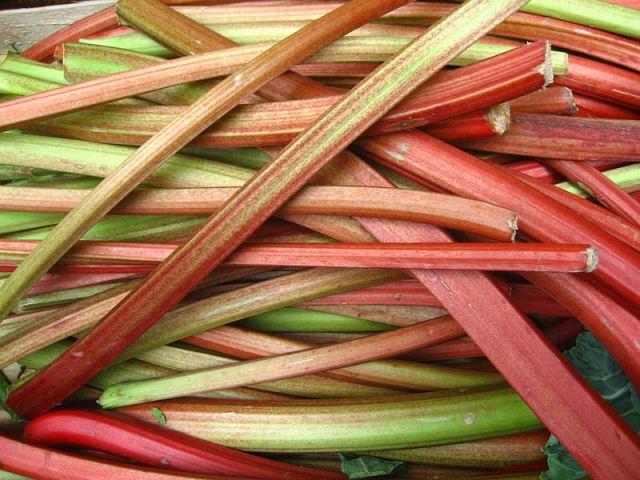A pile of tasty rhubarb.