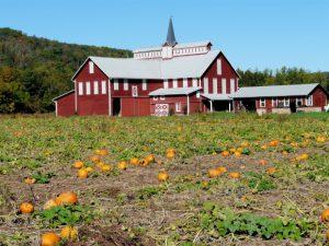 A gorgeous farm.