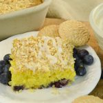 A delicious lemon blueberry dump cake baked and prepared with Rada Cutlery products.