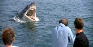 "Robert Shaw battles a giant shark in Steven Spielberg's 1975 film ""Jaws."""