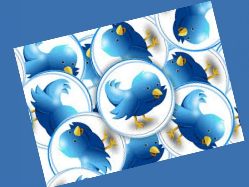 A graphic feature images of the Twitter bird.